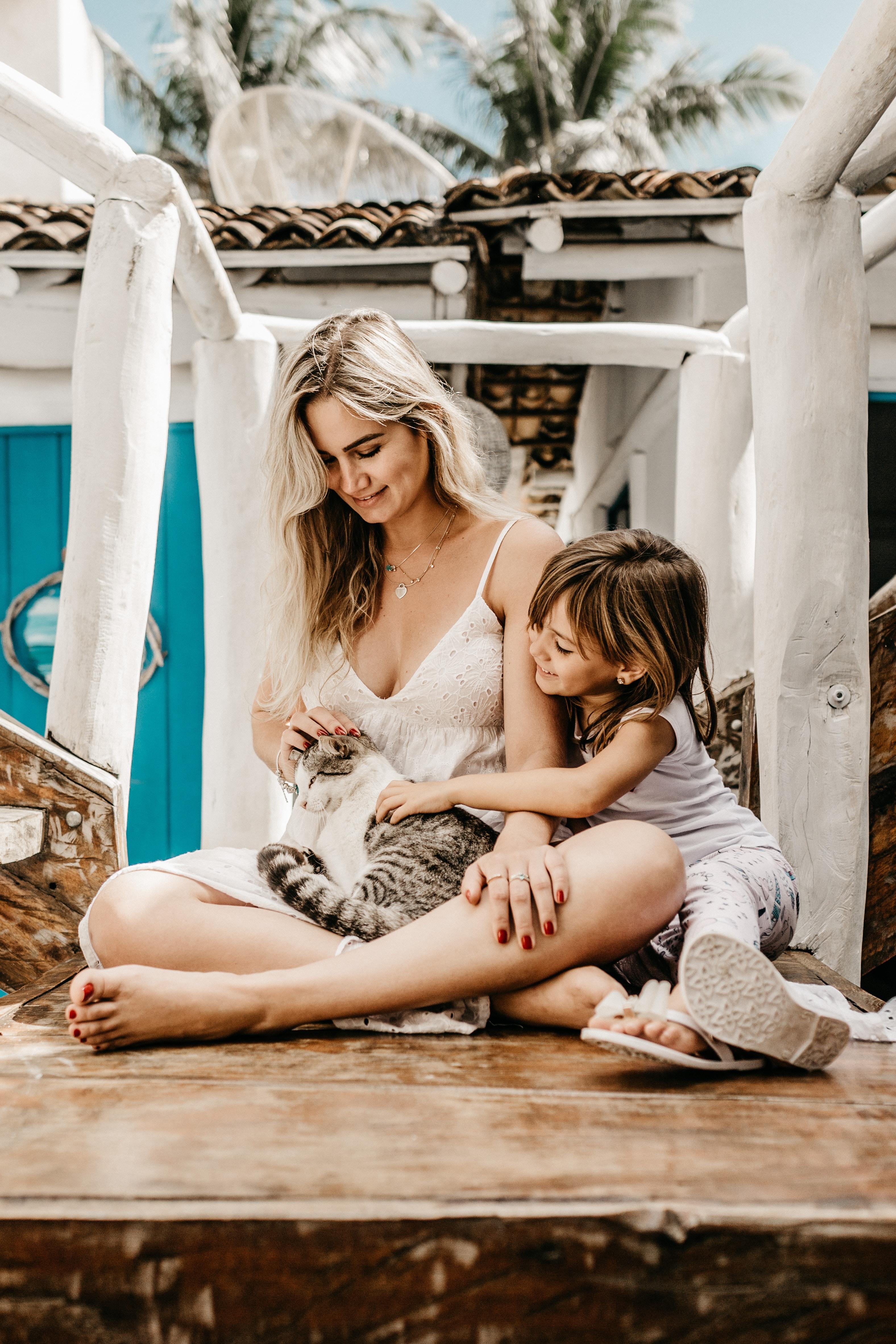 Los gatos benefician tu bienestar y reducen el estrés